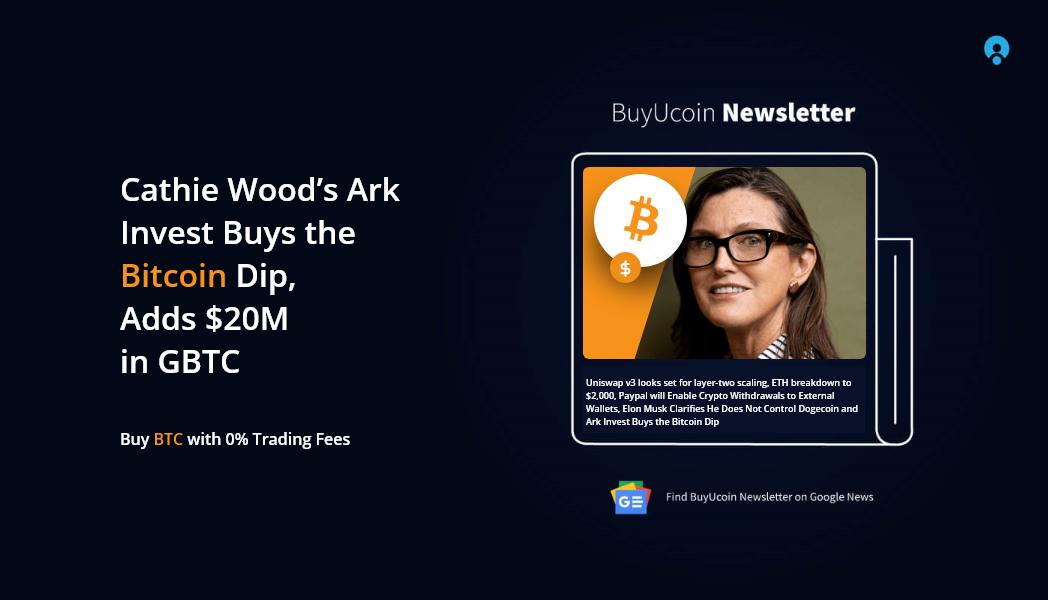 Bitcoin dip